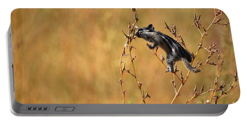 Chipmunk Portable Battery Charger featuring the photograph Balancing Act by Deanna Cagle