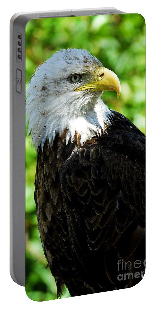 Bald Eagle Portable Battery Charger featuring the photograph Bald Eagle - Alaska by Yefim Bam