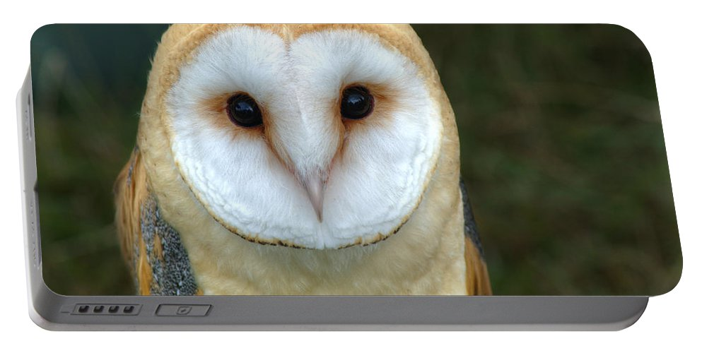Barn Owl Portable Battery Charger featuring the photograph Barn Owl by Chris Day