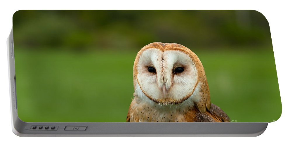 Barn Portable Battery Charger featuring the photograph Barn Owl by Les Palenik