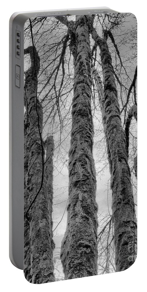 Abstract Portable Battery Charger featuring the photograph Barren by Lauren Leigh Hunter Fine Art Photography