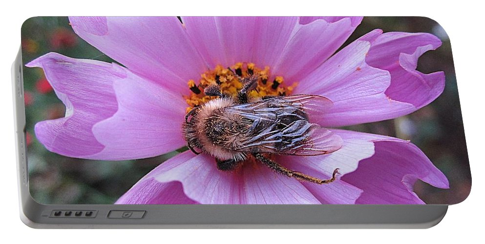Bee Portable Battery Charger featuring the photograph Bee On Cosmos by MTBobbins Photography