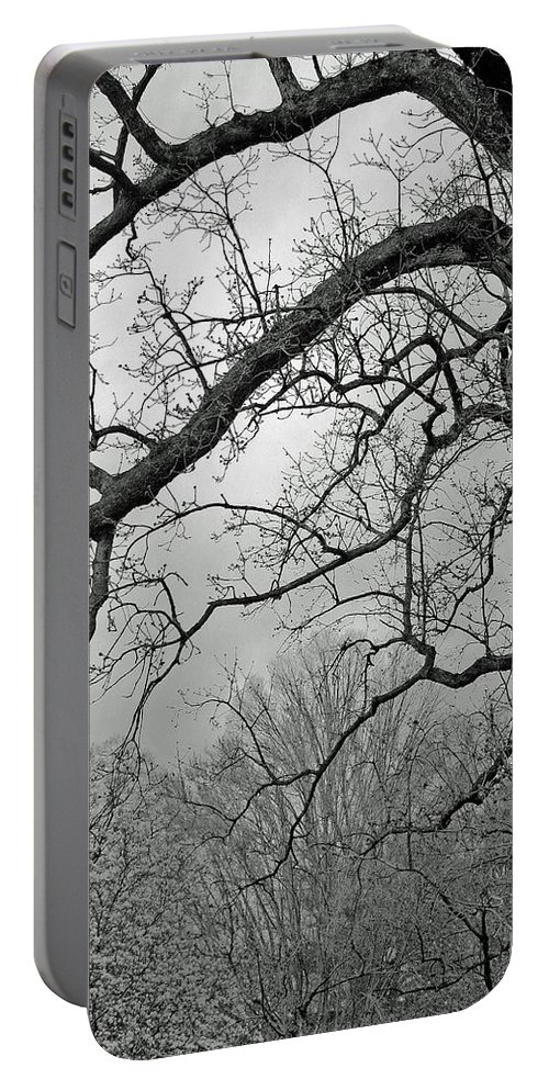 Walking Portable Battery Charger featuring the photograph Beware Lone Walkers by Cora Wandel