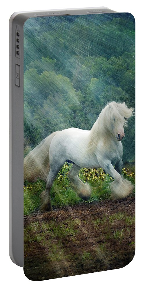 Horse Photographs Portable Battery Charger featuring the photograph Billy Rays by Fran J Scott