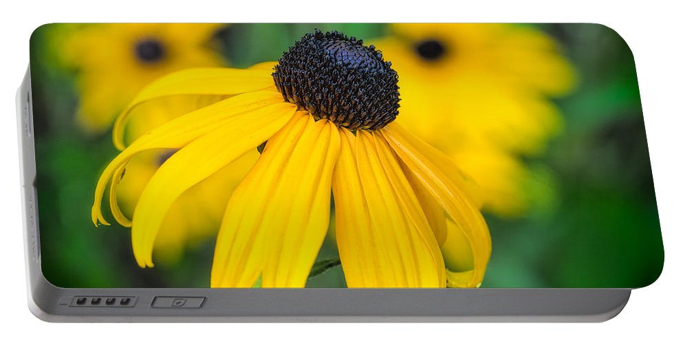 Flower Portable Battery Charger featuring the photograph Blackeyed Susan by David Kay