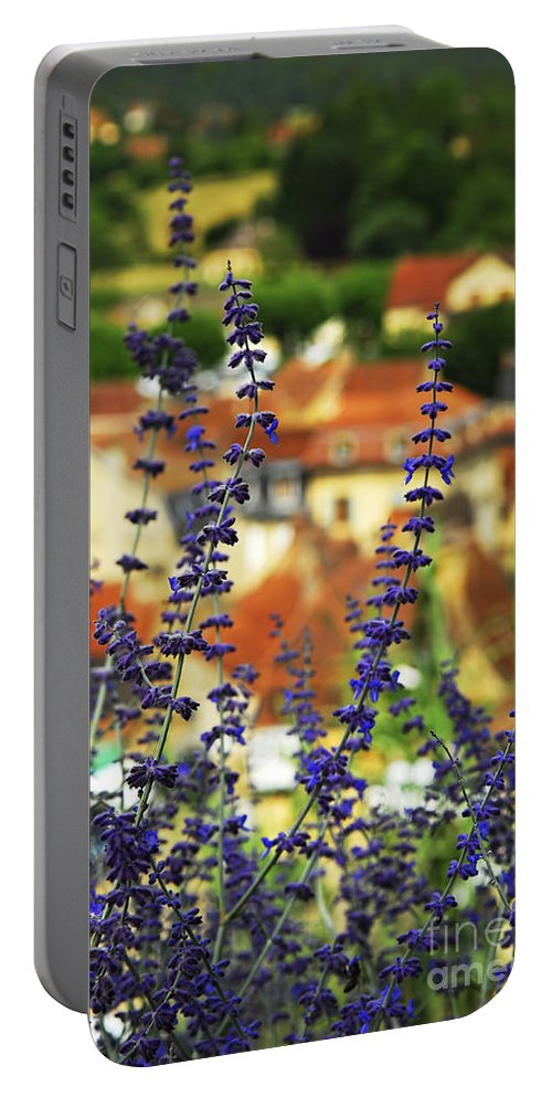 Sarlat Portable Battery Charger featuring the photograph Blue Flowers And Rooftops In Sarlat by Elena Elisseeva