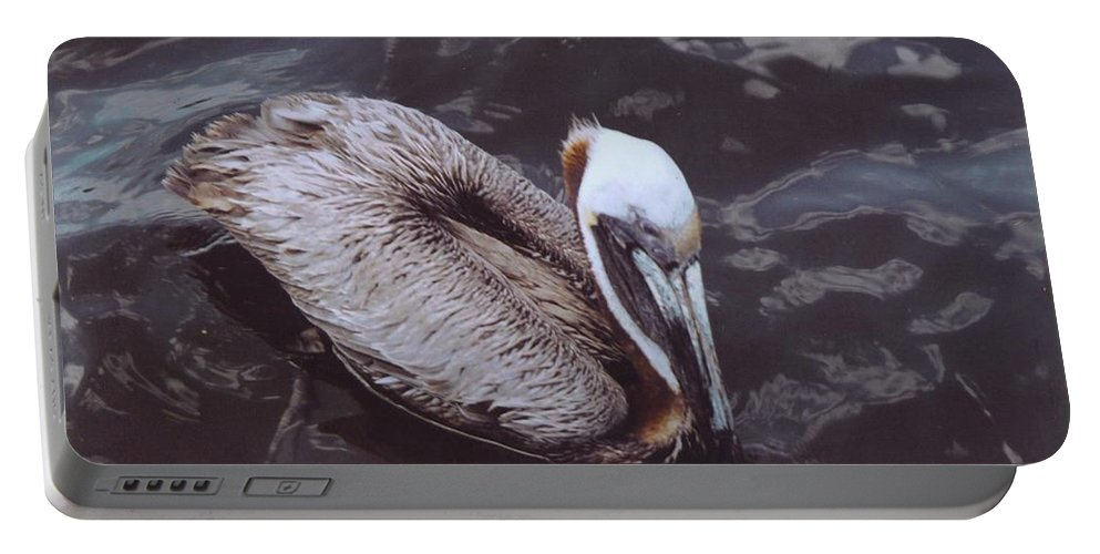 Matlacha Portable Battery Charger featuring the photograph Brown Pelican by Robert Floyd