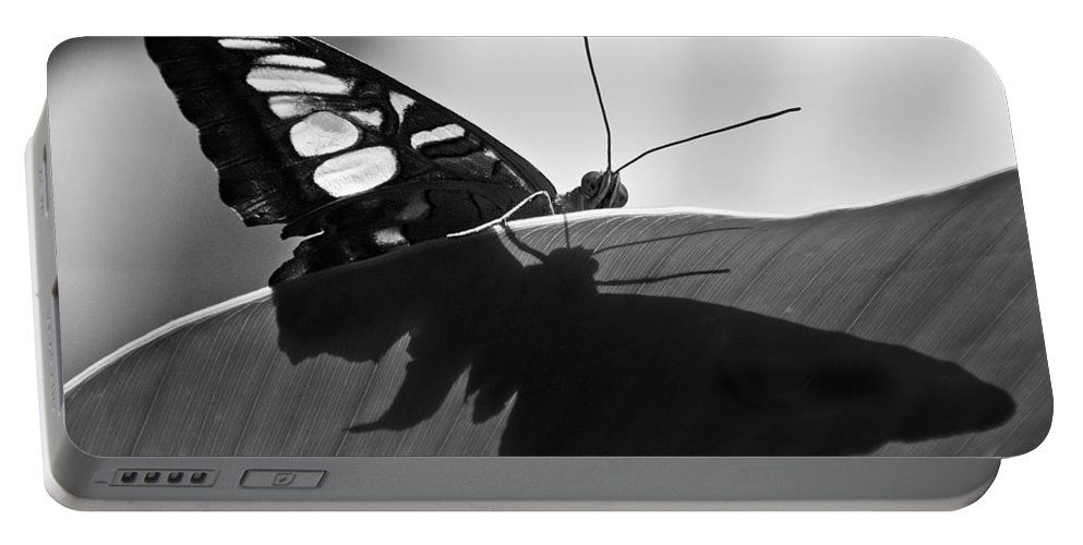 Butterfly Portable Battery Charger featuring the photograph Butterfly II by Ron White