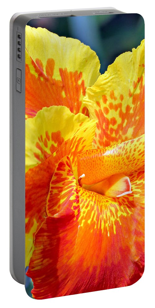 Canna Portable Battery Charger featuring the photograph Cannas by Paul Fell