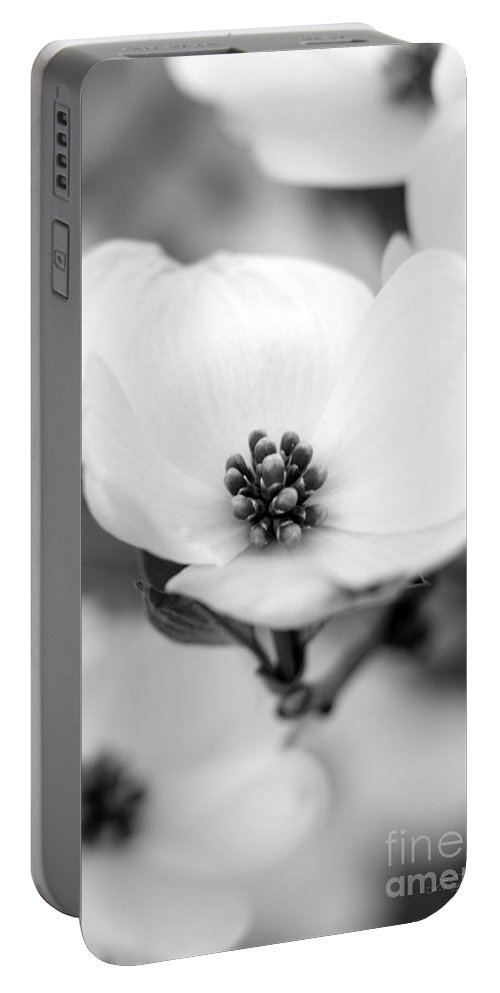 Cherokee Princess Flowering Dogwood Portable Battery Charger featuring the photograph Dogwood Blossom by Iris Richardson