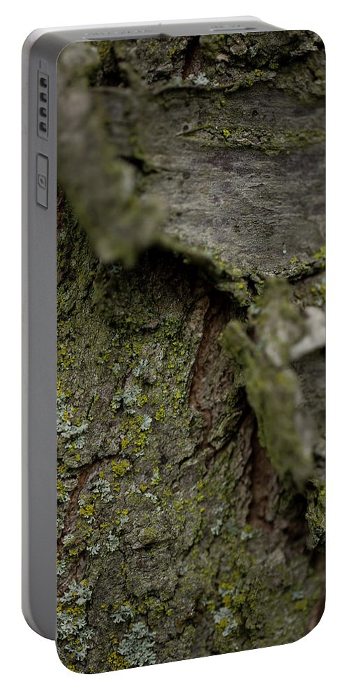 Hessen Portable Battery Charger featuring the photograph Closeup Of Bark Covered In Lichen by Sebastian Kujas