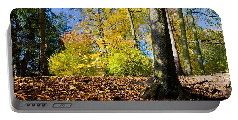 Fall Portable Battery Charger featuring the photograph Colorful Fall Autumn Park by Michal Bednarek