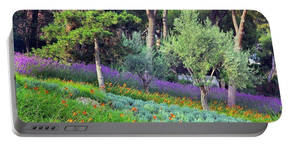 Park Portable Battery Charger featuring the photograph Colorful Park With Flowers by Michal Bednarek