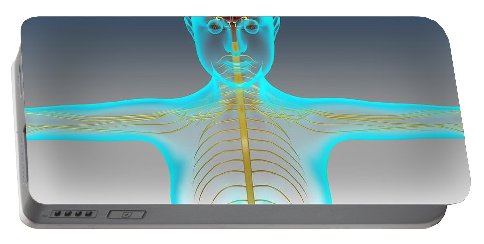 Horizontal Portable Battery Charger featuring the digital art Conceptual Image Of Female Nervous by Stocktrek Images