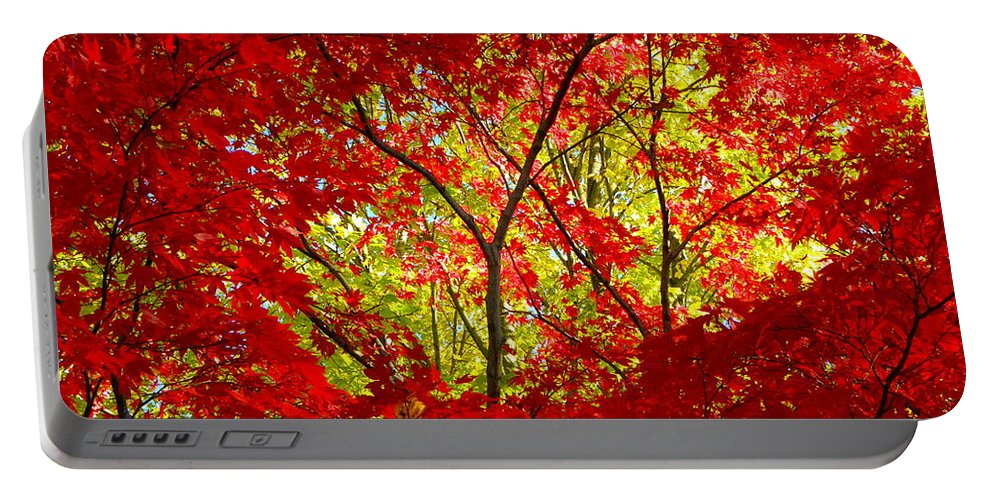 Crimson Portable Battery Charger featuring the photograph Crimson Window by Sharon Woerner