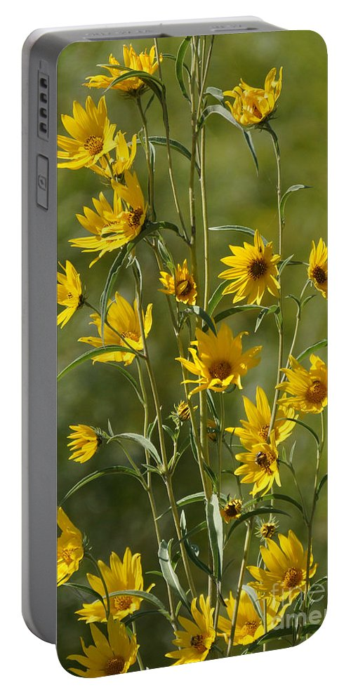 Yellow Portable Battery Charger featuring the photograph Dancing In The Wind by Lori Tordsen