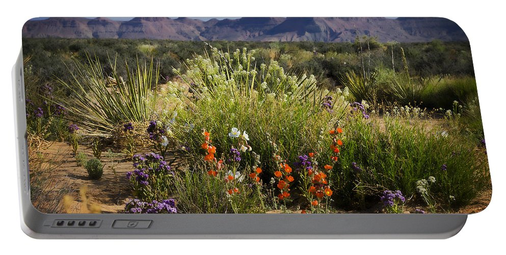Wildflowers Portable Battery Charger featuring the photograph Desert Wildflowers by Saija Lehtonen