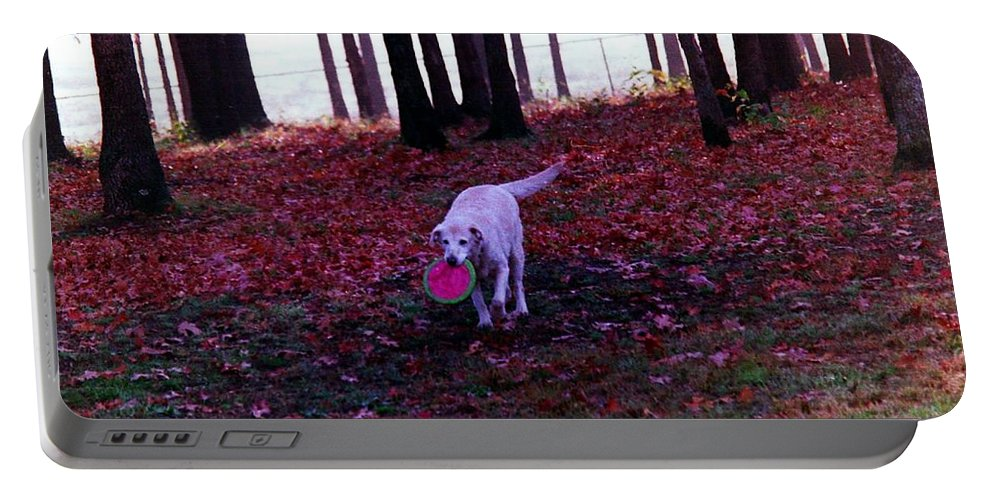 Dogs Portable Battery Charger featuring the photograph Dog by Karl Rose