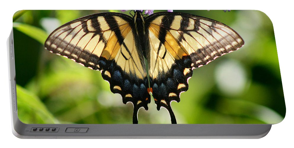 Butterfly Portable Battery Charger featuring the photograph Eastern Tiger Swallowtail Butterfly by Karen Adams