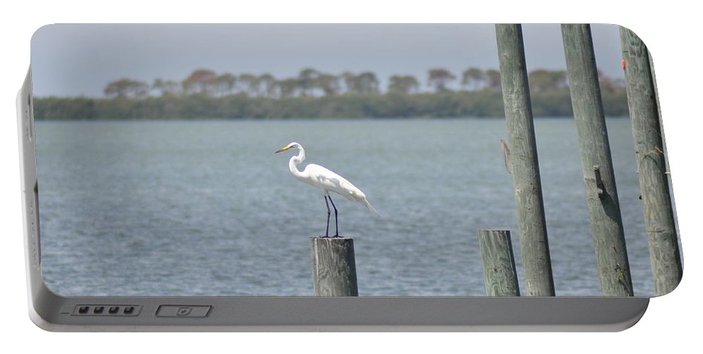 Egret Portable Battery Charger featuring the photograph Egret by Bill Cannon
