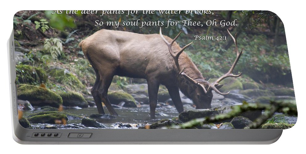 Elk Portable Battery Charger featuring the photograph Elk Drinking Water From A Stream by Jill Lang