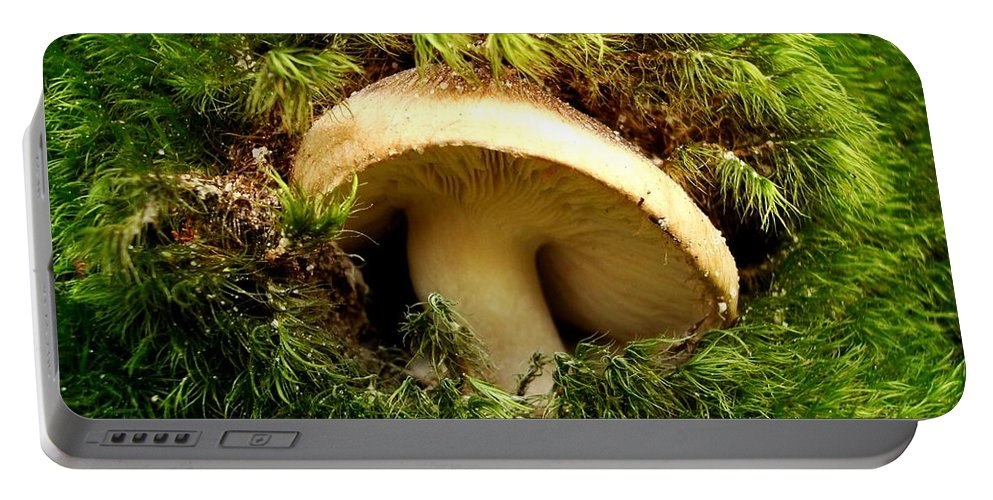 Mushroom Portable Battery Charger featuring the photograph Emerald Palace by Sharon Woerner