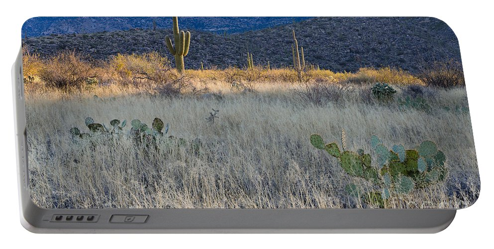 Nature Portable Battery Charger featuring the photograph Engelmanns Prickly Pear Cactus by John Shaw