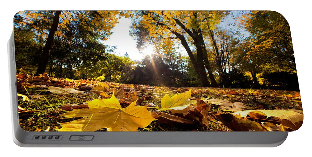Fall Portable Battery Charger featuring the photograph Fall Autumn Park. Falling Leaves by Michal Bednarek