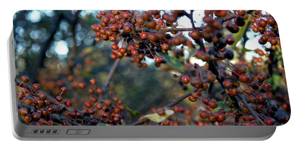 Berries Portable Battery Charger featuring the photograph Fall Fruit by Joseph Yarbrough