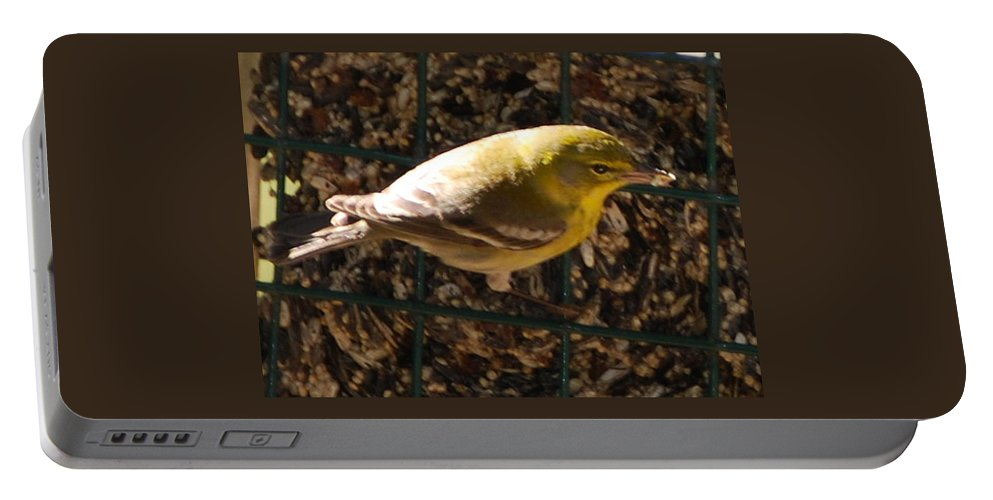 Feeding At My Bird Cake Portable Battery Charger featuring the photograph Finch by Robert Floyd