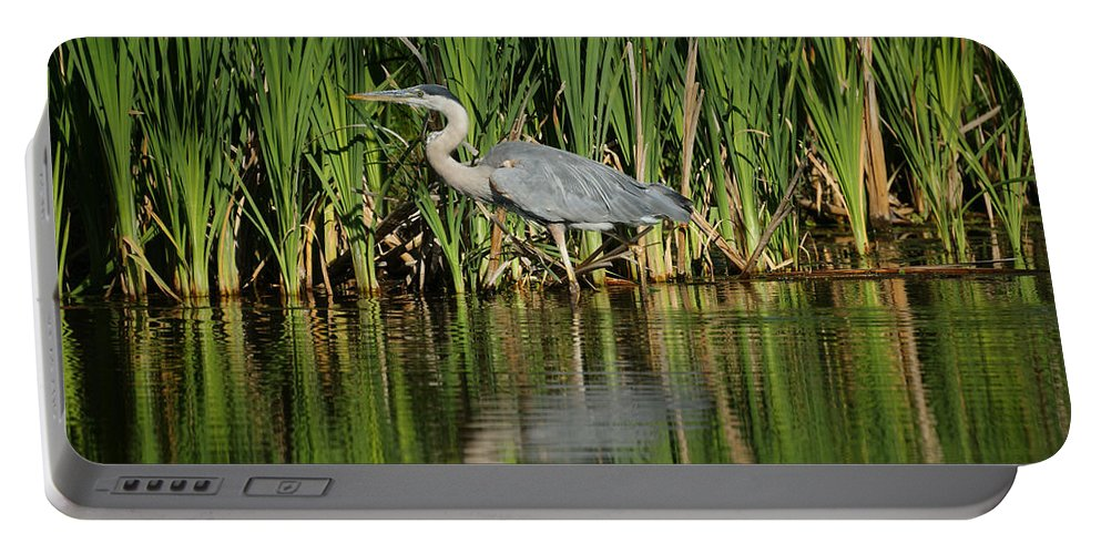 Animals Portable Battery Charger featuring the photograph Great Blue Heron by Ernie Echols