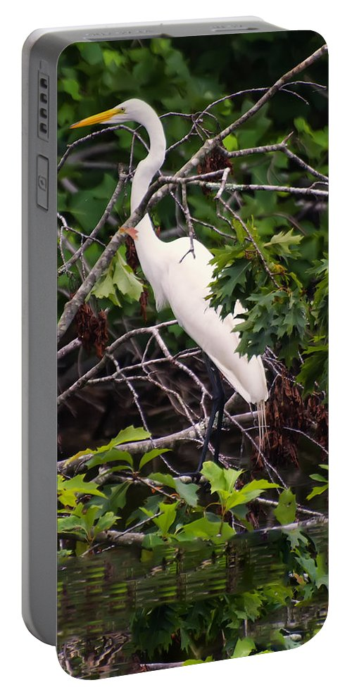 Bird Portable Battery Charger featuring the photograph Great White Egret by Chris Flees