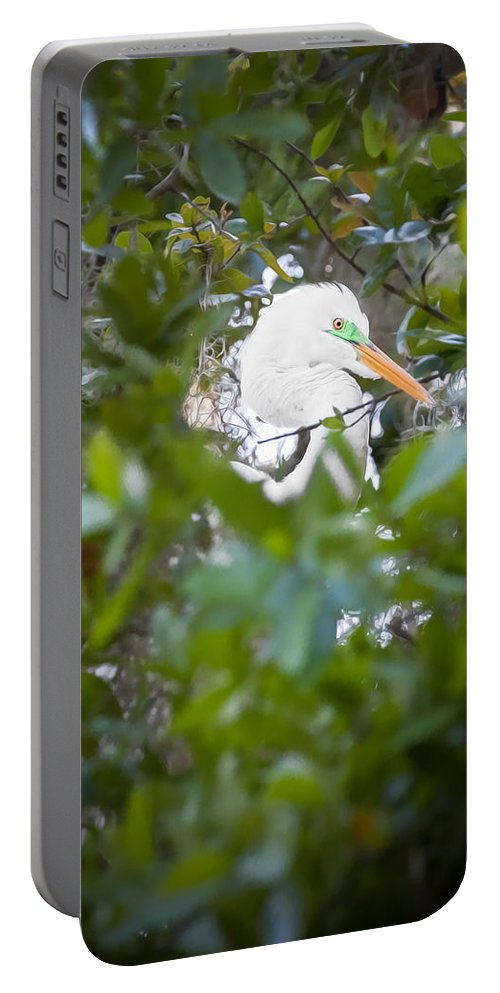 Egret Portable Battery Charger featuring the photograph Great White Egret Heron Breeding Season Painted by Rich Franco