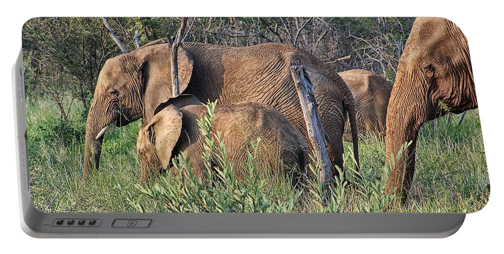 Elephant Bull Portable Battery Charger featuring the photograph Greener Pastures by Douglas Barnard