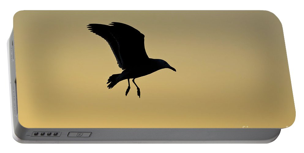 Nature Portable Battery Charger featuring the photograph Gull Silhouette by John Shaw