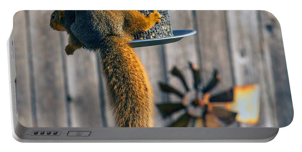Winter Scene Portable Battery Charger featuring the photograph Hanging In There by Edward Peterson