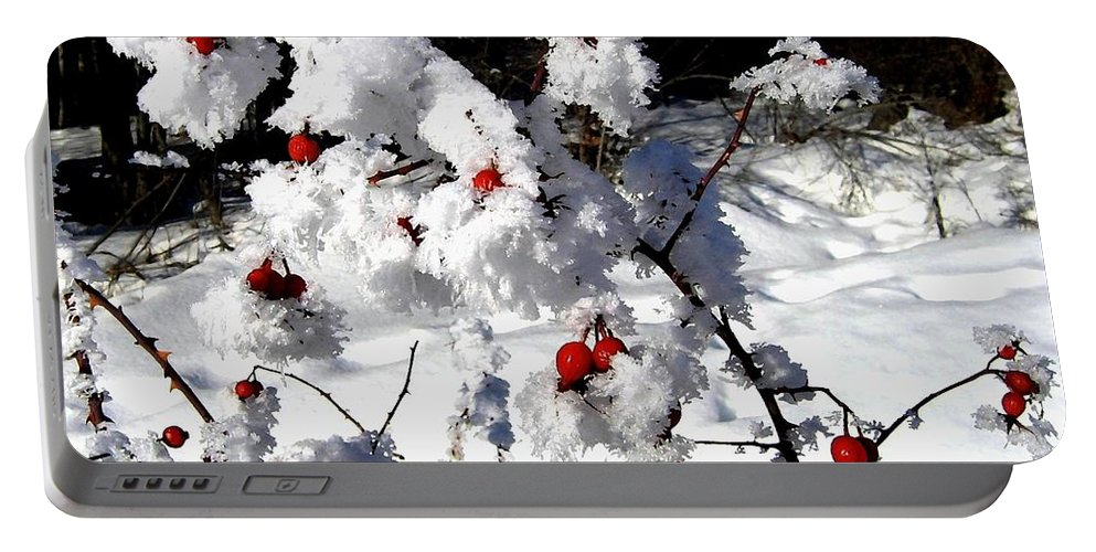Frost Portable Battery Charger featuring the photograph Highland Frost by Will Borden