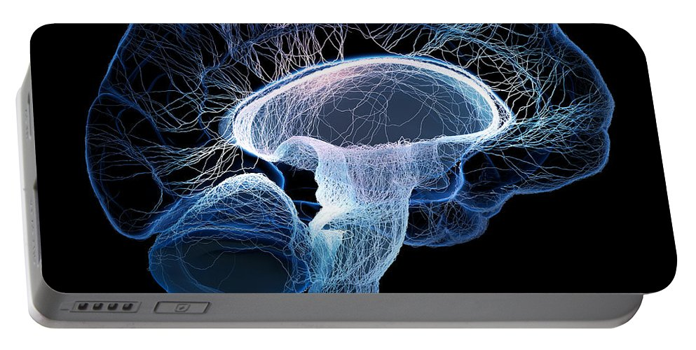 Brain Portable Battery Charger featuring the photograph Human brain complexity by Johan Swanepoel