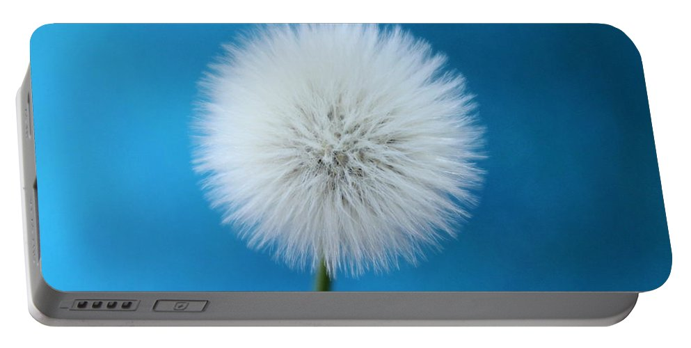 Dandelion Portable Battery Charger featuring the photograph Innocence by Krissy Katsimbras