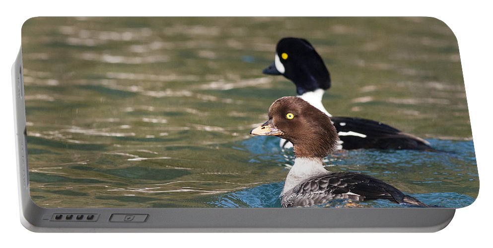 Goldeneye Portable Battery Charger featuring the photograph It Takes Two by Ted Raynor