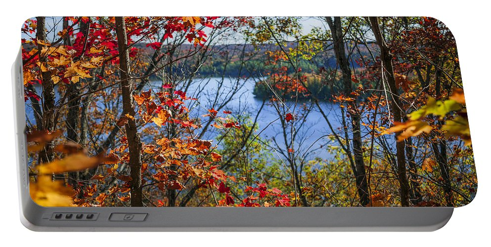 Forest Portable Battery Charger featuring the photograph Lake And Fall Forest by Elena Elisseeva