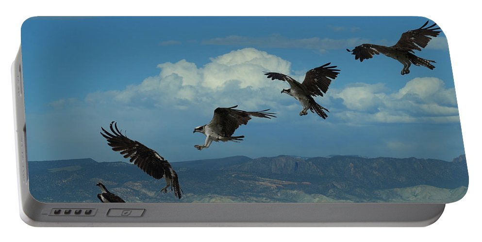 Birds Portable Battery Charger featuring the digital art Landing Pattern Of The Osprey by Ernie Echols