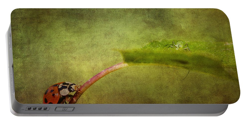 Ladybird Portable Battery Charger featuring the photograph Looking For Dinner by Chris Smith