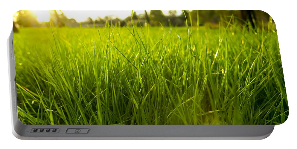 Abstract Portable Battery Charger featuring the photograph Lush Grass by Tim Hester