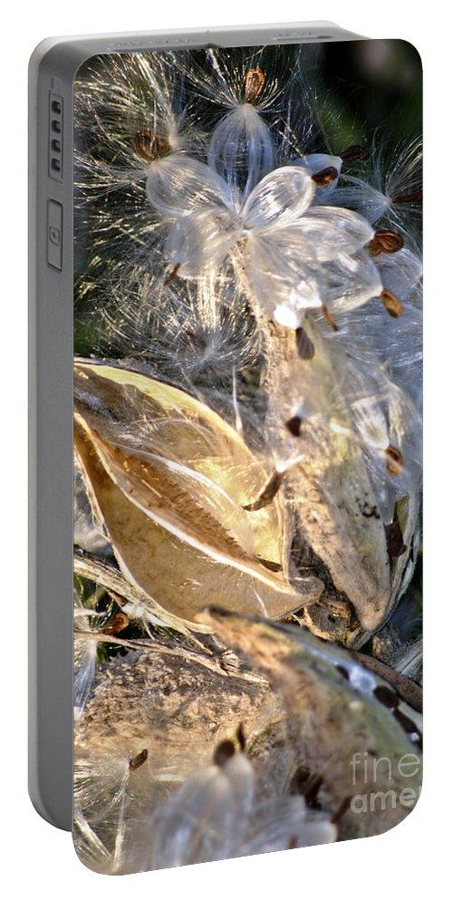 Milkweed Canvas Prints Portable Battery Charger featuring the digital art Milkweed II by Danielle Summa