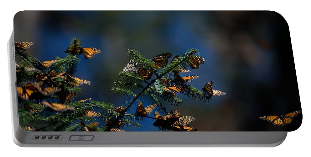 Animals Portable Battery Charger featuring the digital art Monarch Butterflies by Carol Ailles