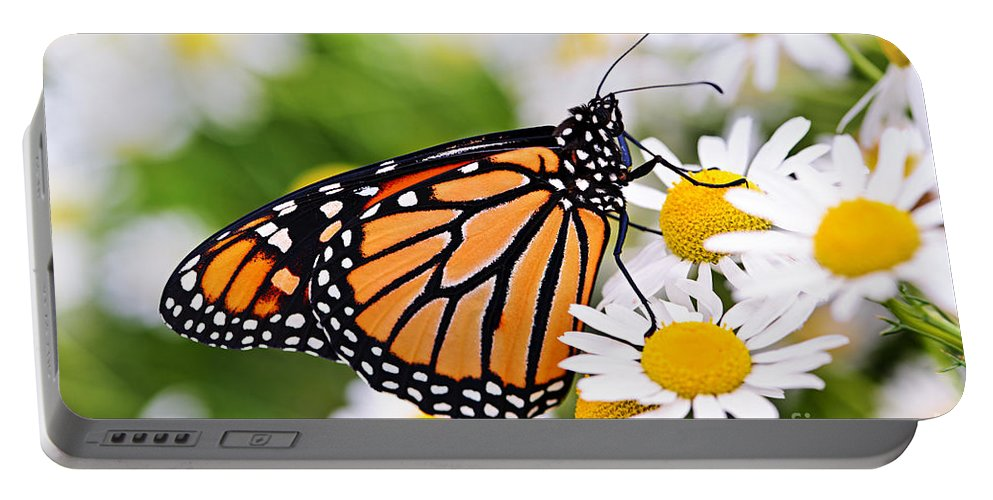 Monarch Portable Battery Charger featuring the photograph Monarch Butterfly by Elena Elisseeva