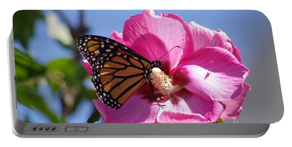Monarch Portable Battery Charger featuring the photograph Monarch by Tannis Baldwin
