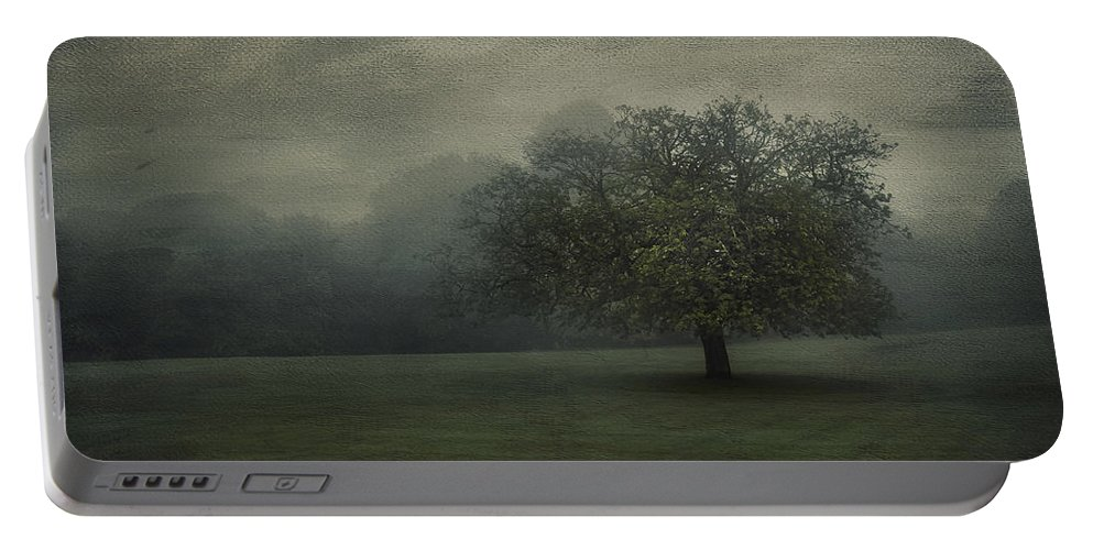 Beautiful Portable Battery Charger featuring the photograph One Tree by Svetlana Sewell