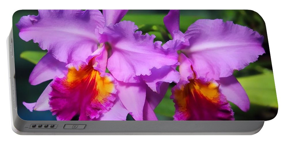 Orchid Portable Battery Charger featuring the photograph Orchid by Joyce Baldassarre